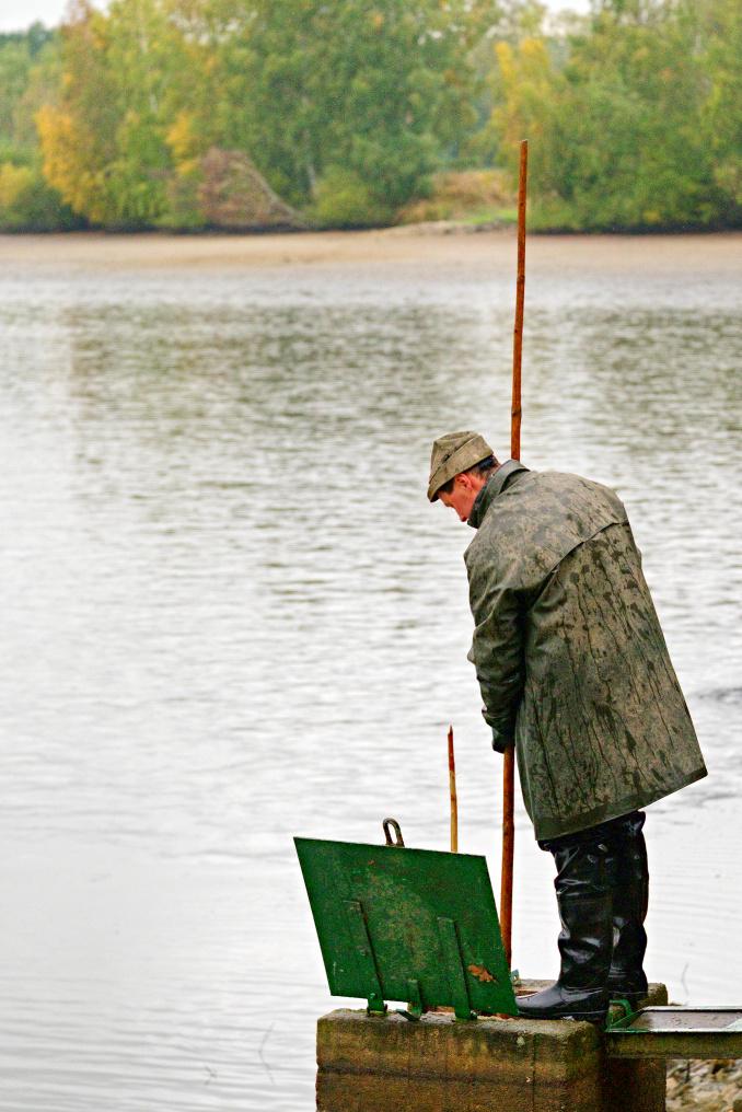Výlov Velkoholského rybníku